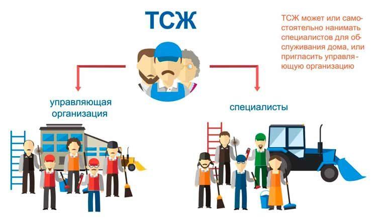 Обязанности председателя ТСЖ в многоквартирных домах: его права, полномочия и ответственность согласно жилищного кодекса РФ