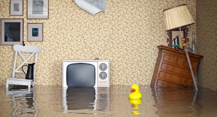 Независимая экспертиза после залива квартиры— пошаговая инструкция как действовать при затоплении квартиры профессиональная помощь в проведении независимой экспертизы квартиры