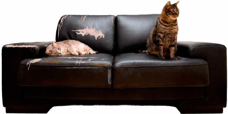 Срок рекламации по мебели закону